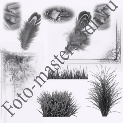 кисти рамки , перо, трава и книги